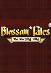 气球传说沉睡的国王游戏